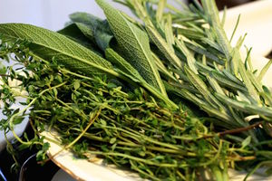 From left to right: thyme, sage, and rosemary.