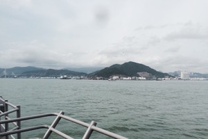 The coast of Hong Kong, as seen from our boat.
